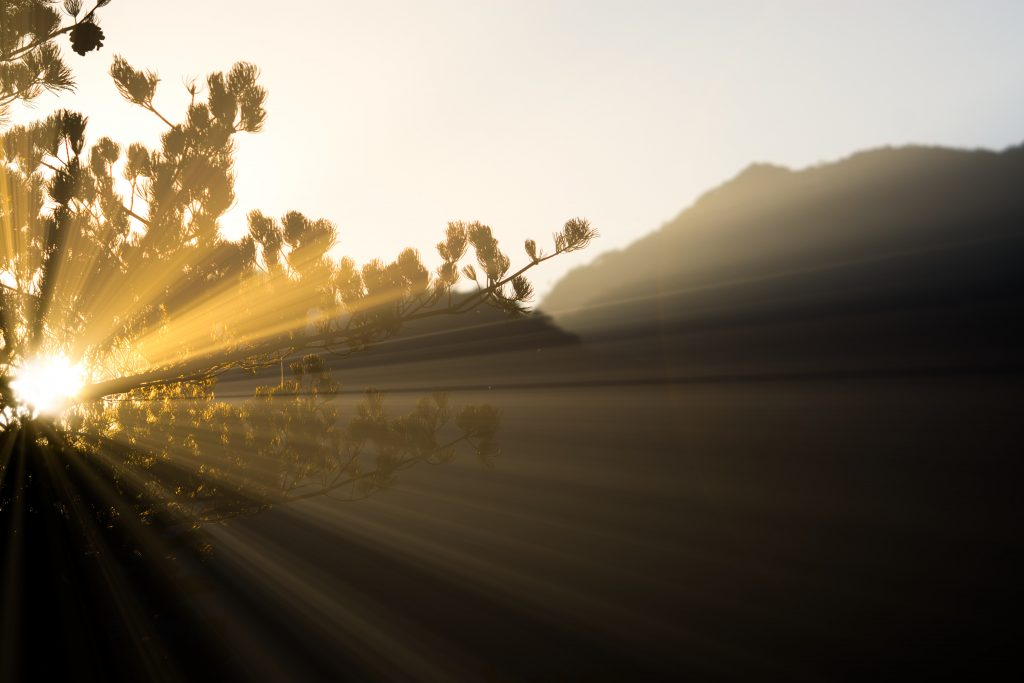 The Kabballah Honors Light - Daily Meditations with Matthew Fox